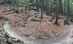 Rychlebské stezky - Biskupský, Tajemný, Mramorový, Sjezdy