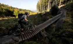 Rychlebské stezky - Trail Dr. Wiessnera