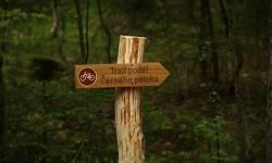 Rychlebské stezky - Trail podél Černého potoka