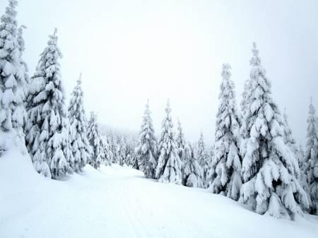 Ski Kunčice - Chlupenkovec
