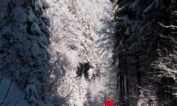 Petrovka - Kouty nad Desnou