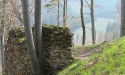 Zřícenina hradu Edelštejn