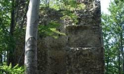 Zřícenina hradu Kaltenštejn