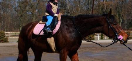 Jezdecký oddíl Dubicko