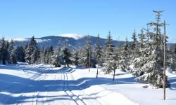 Lyžařské běžecké trasy Paprsek