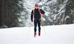 Lyžařské běžecké trasy Červenohorské sedlo