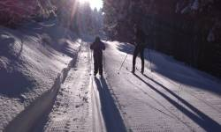 Lyžařské běžecké trasy Karlov pod Pradědem
