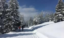 Lyžařské běžecké trasy Skřítek