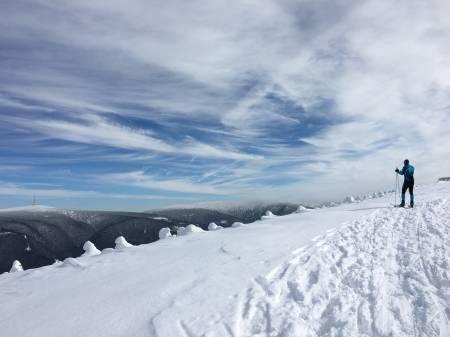 Lyžařské běžecké trasy Kouty nad Desnou