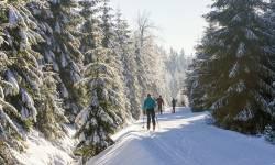 Lyžařské běžecké trasy Nová Ves